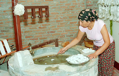 Turkish woman preparing silk worm cocoons for removal of the silk